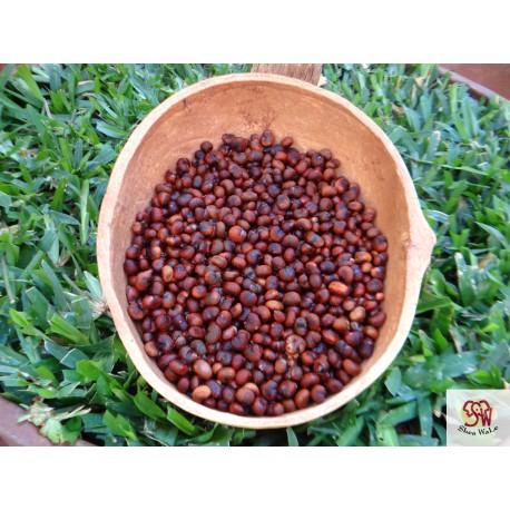 Baobab Oil, cold-pressed, unrefined