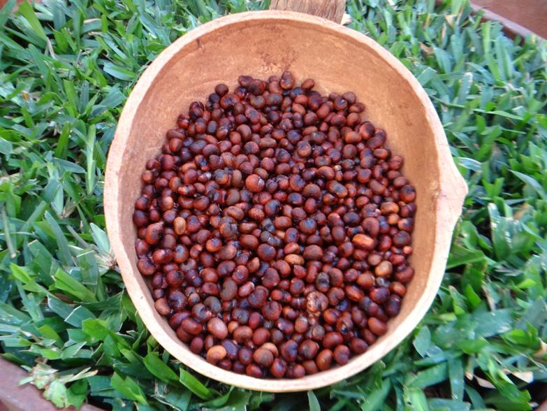 Shea WaLe Baobab Öl